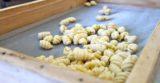 Cilento. Da chi comprare la pasta fresca ogni giorno a Vallo della Lucania