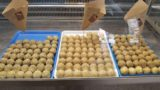 Sicilia. La Putìa del Coppo che vi delizia con arancine a 1 € a Modica