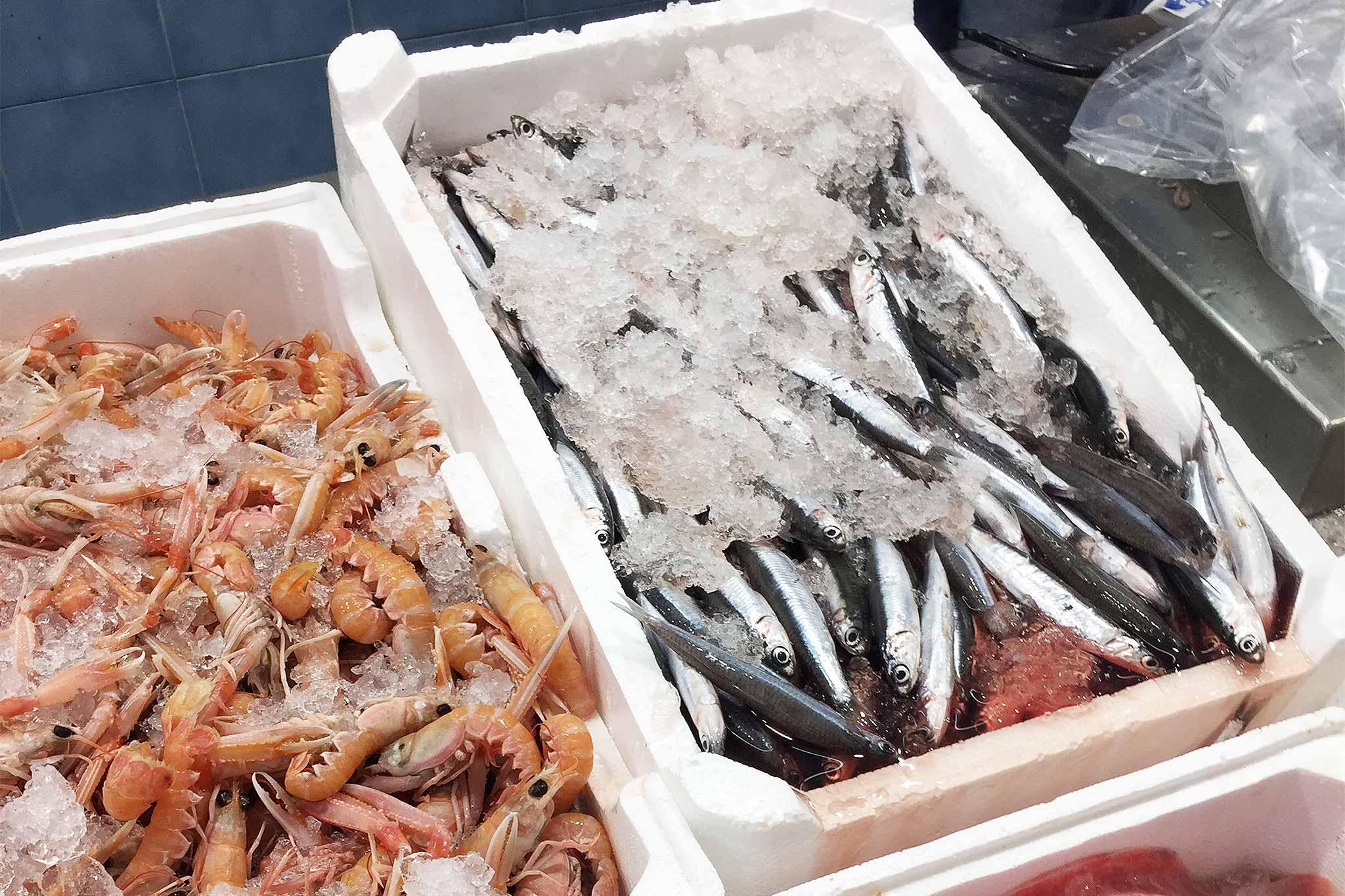 Roma i prezzi di officina del pesce pescheria e for Cucinare murena