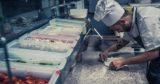 Roma. Alma Buona, pizzeria che apre per accontentare vegani, crudisti, alcalariani, fruttariani, melariani