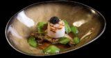 La splendida ricetta della gelatina di pesce per capire perché andare a Siena Food Innovation