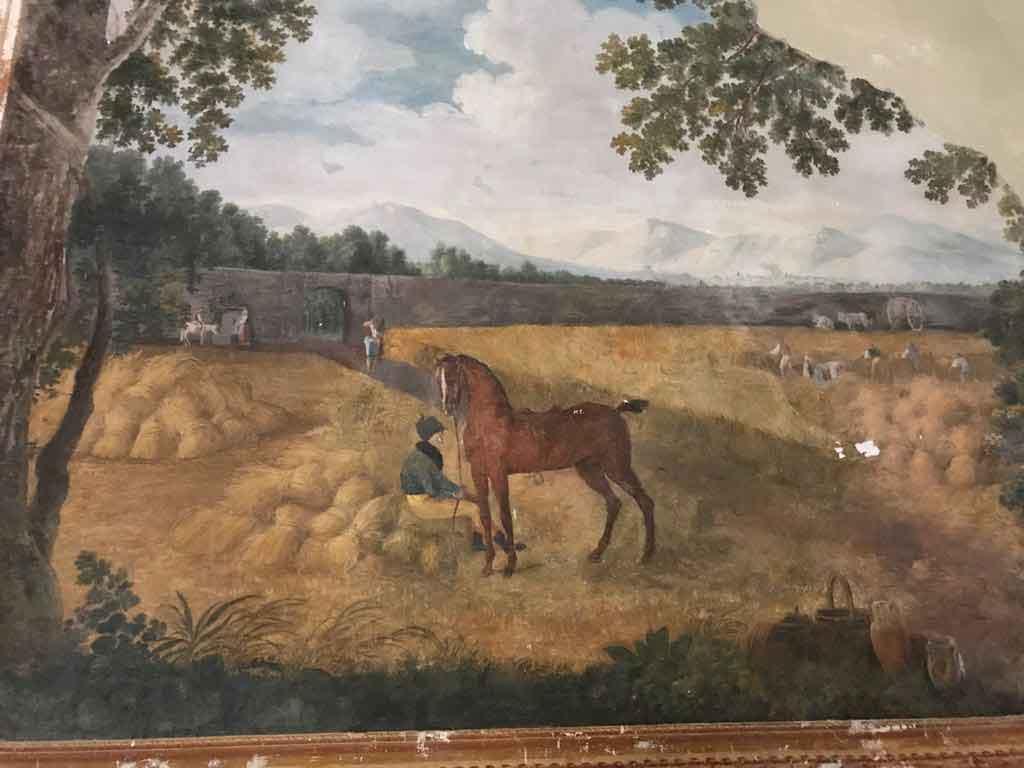 Real Sito Carditello cavalli