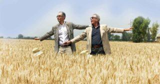 20 mulini aperti al pubblico vi spiegano cos'è veramente la farina