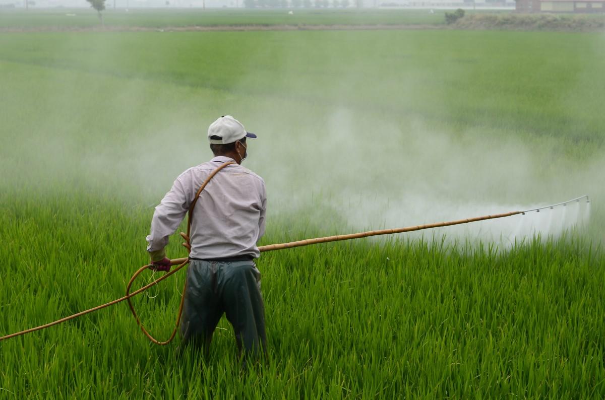 Glifosato pesticida
