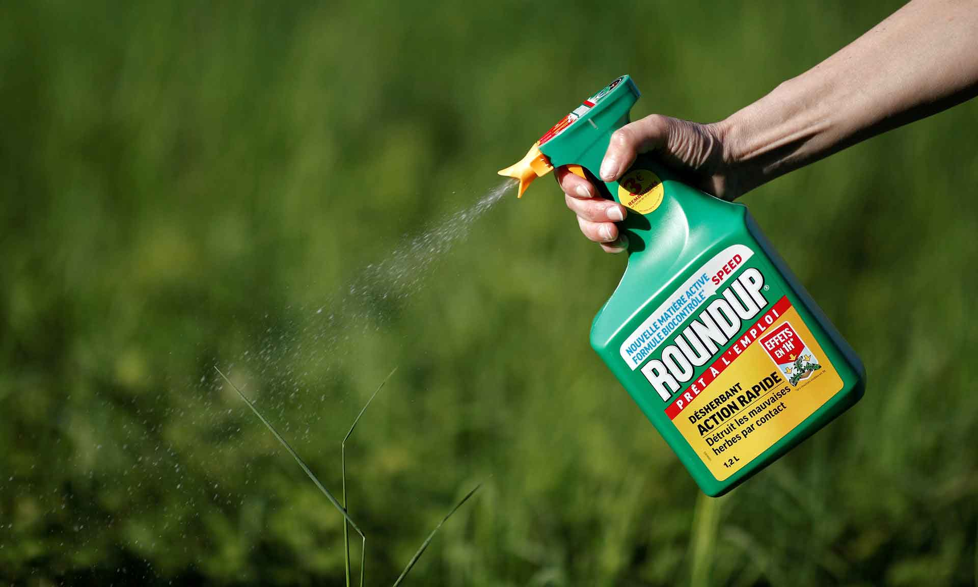 Glifosato Monsanto