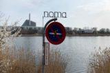 Noma ristorante Copenaghen