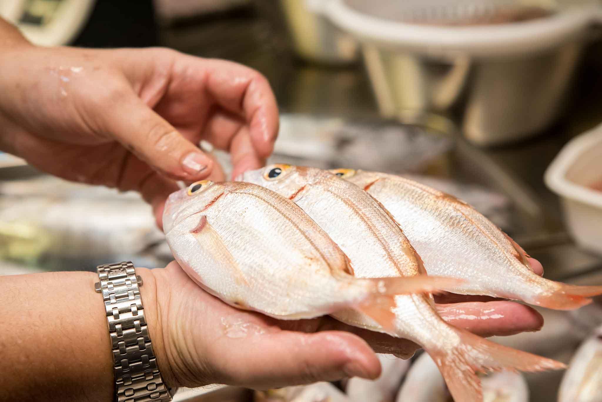Roma Chinappi Ristorante Di Pesce Che Ora Ha In Carta Anche La Pizza