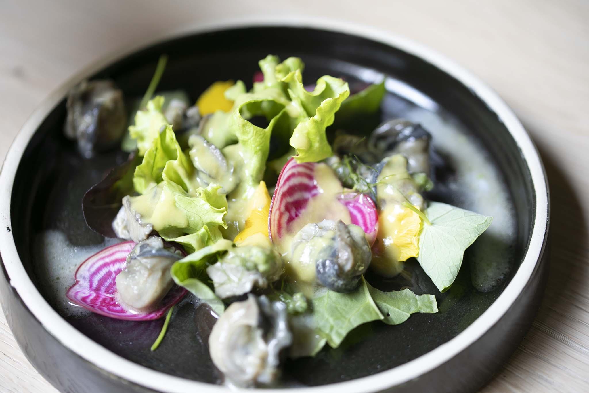 Marconi lumaca bolognese insalatina