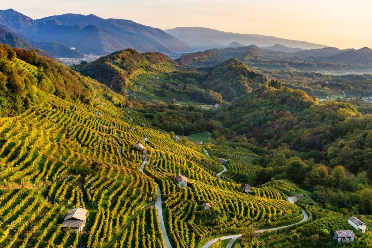 Prosecco patrimonio Unesco con le colline di Conegliano e Valdobbiadene