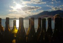 In Vino Civitas bottiglie sfondo golfo