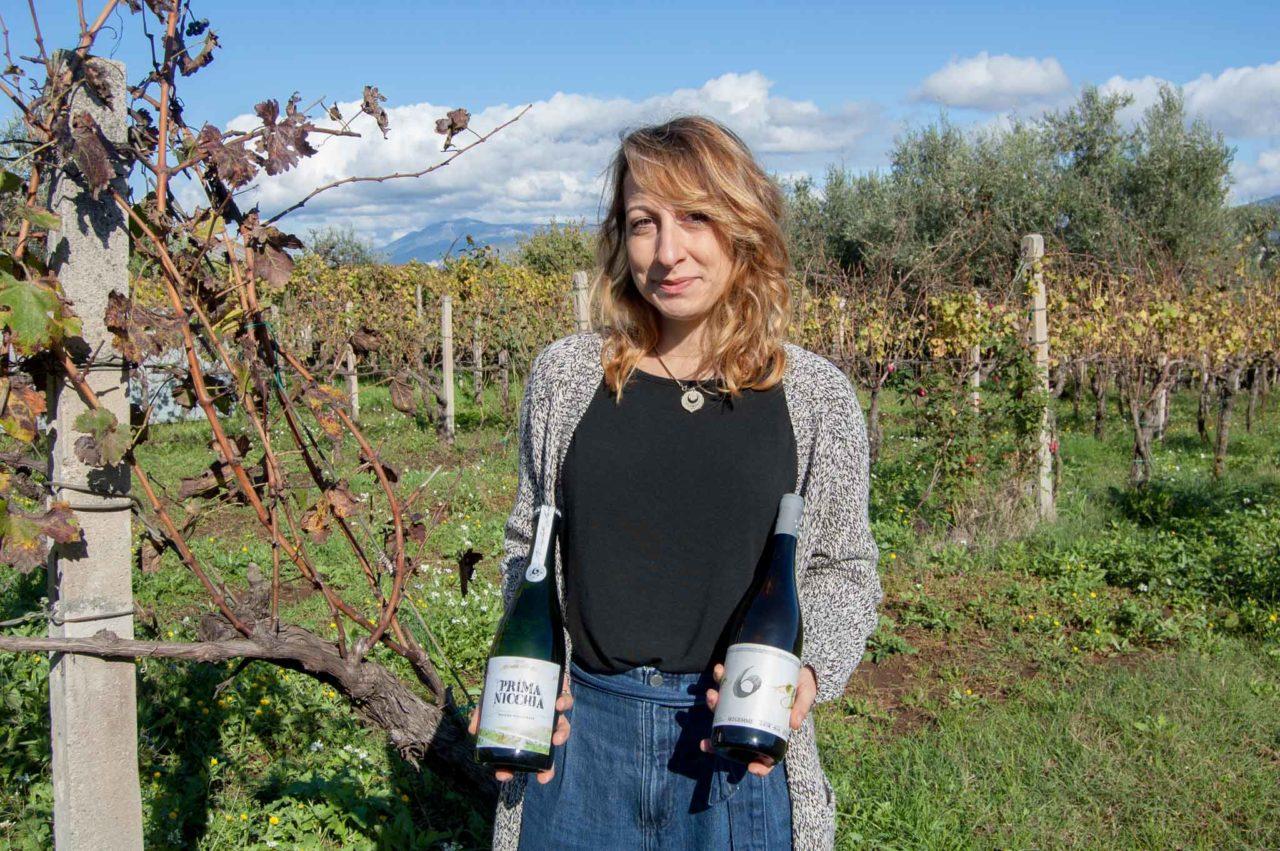 Ottimi vini naturali vicino Roma