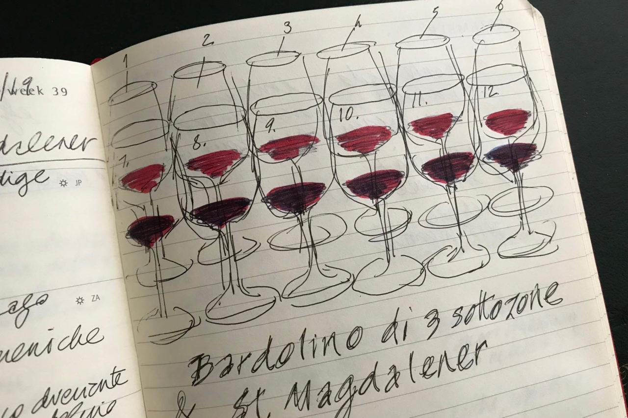 vino illustrazione