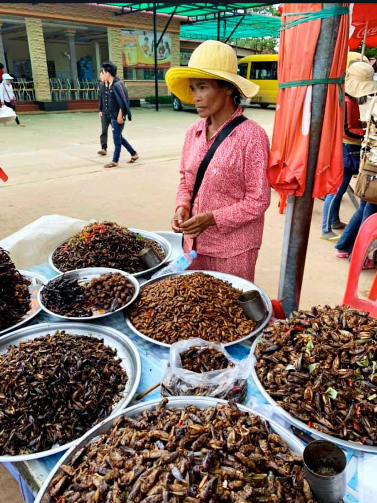 Cambogia mercato dei ragni a Skoun