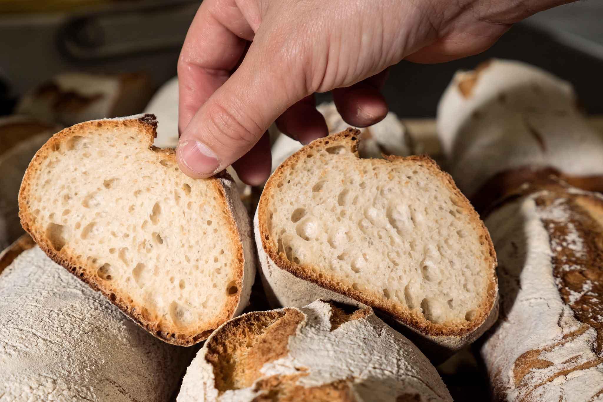 I Segreti Del Pane il pane buono della nonna, la ricetta di matteo cunsolo