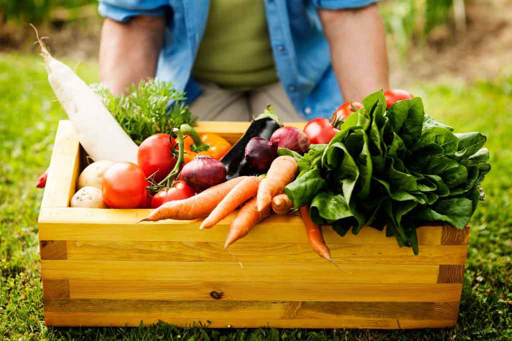 consegna a domicilio di ortaggi e frutta