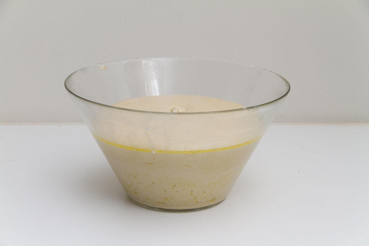 riposo impasto lievitazione naturale acqua fermentata