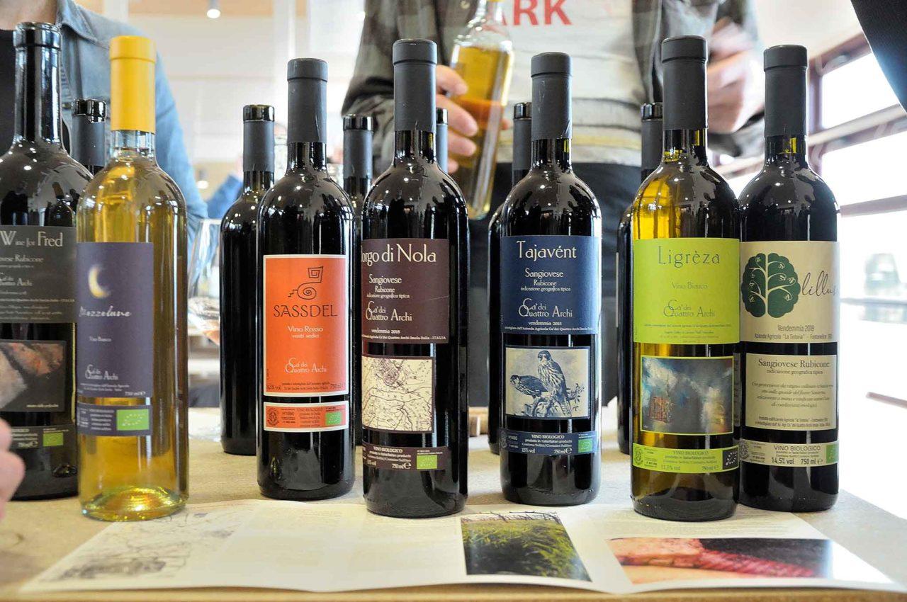 vini naturali Ca' dei quattro archi ligreza