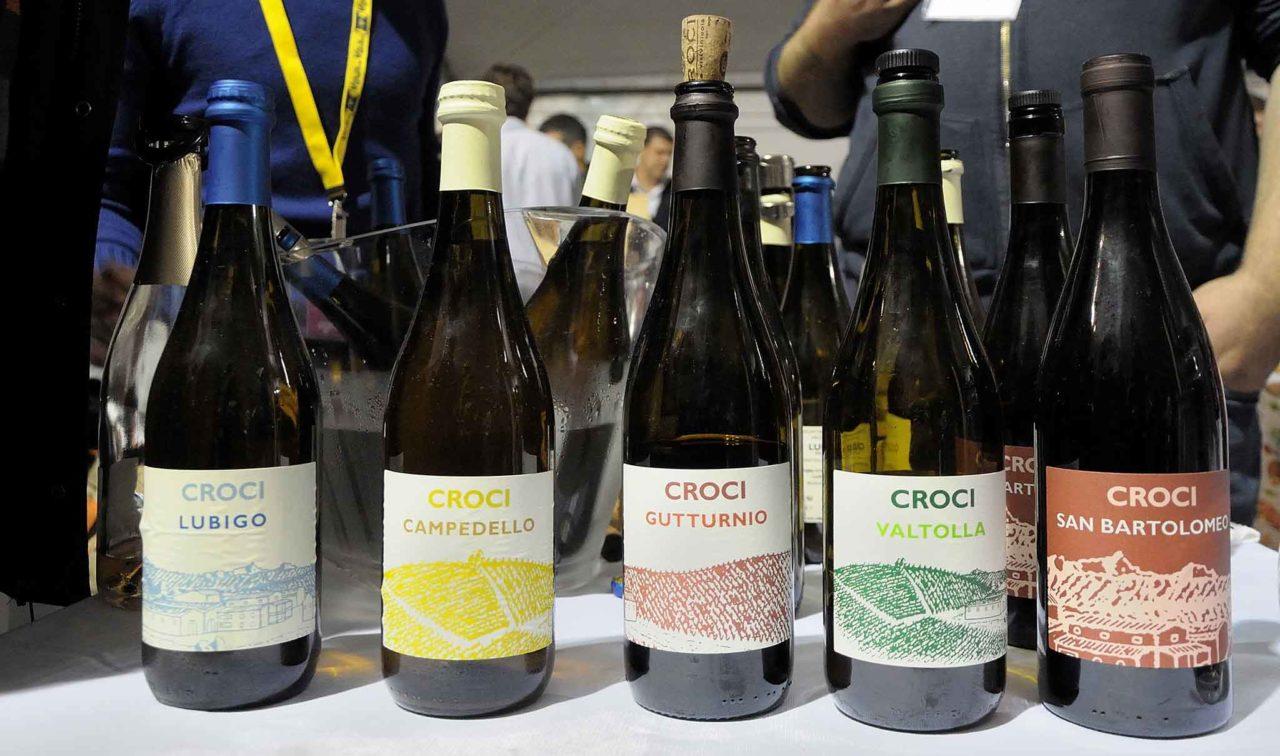 vini naturali azienda agricola Croci