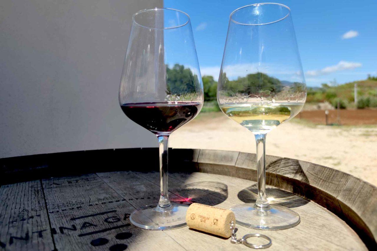 Vini cantina Gaffino