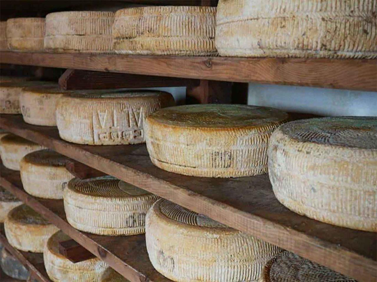 formaggio latteria Costalta