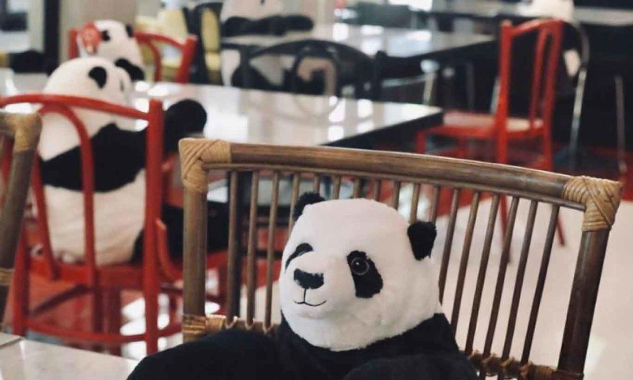 panda da saigon milano