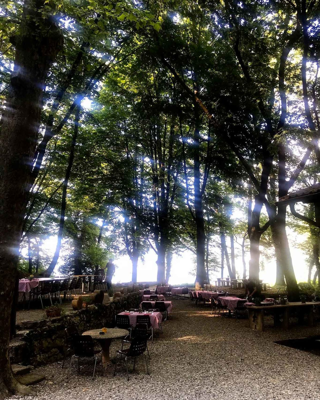 tavoli nel bosco