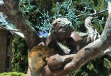 Castelfalfi scultura ulivo Andrea Roggi olio