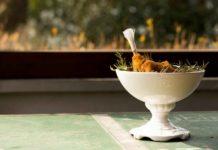 ristorante Al Cjasal San Michele al Tagliamento