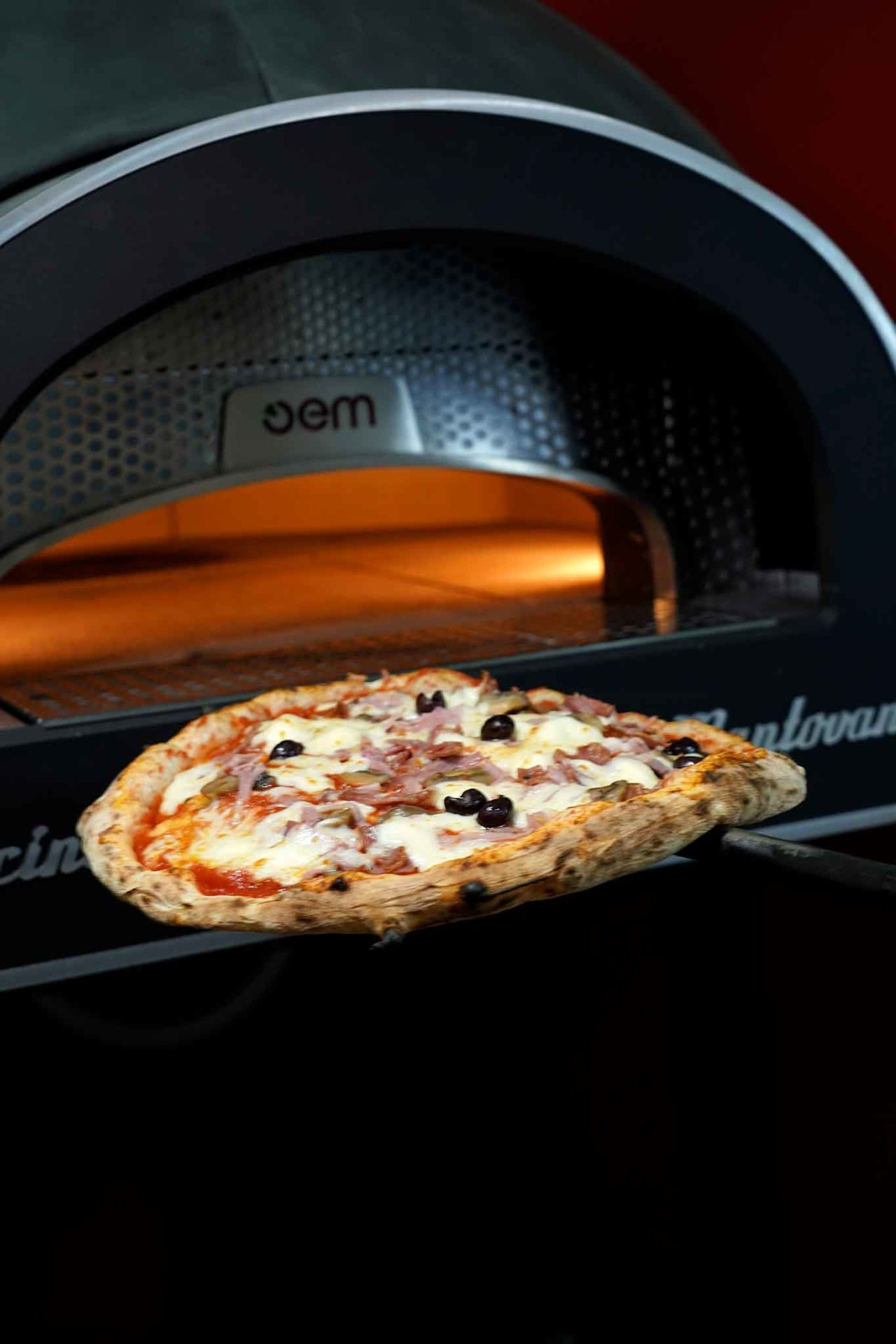 pizza capricciosa forno elettrico Dome OEM Gina Pizza Portici