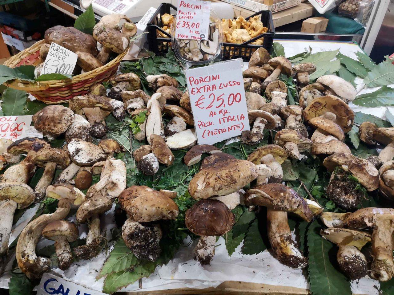 funghi porcini prezzo