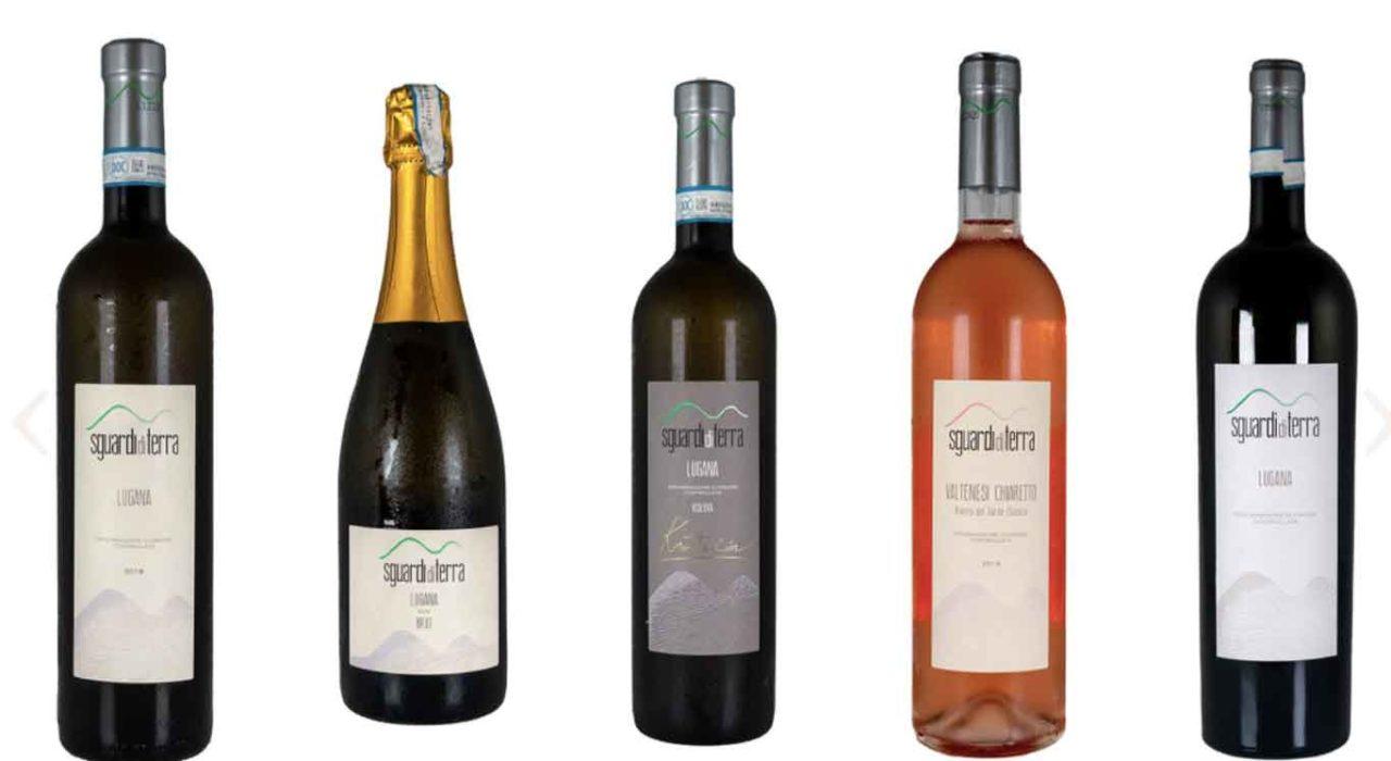 sguardi della terra cantina lugana alla Milano Wine Week 2020