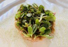 Insight Eatery ristorante Abruzzo tartare gambero insalata portulaca