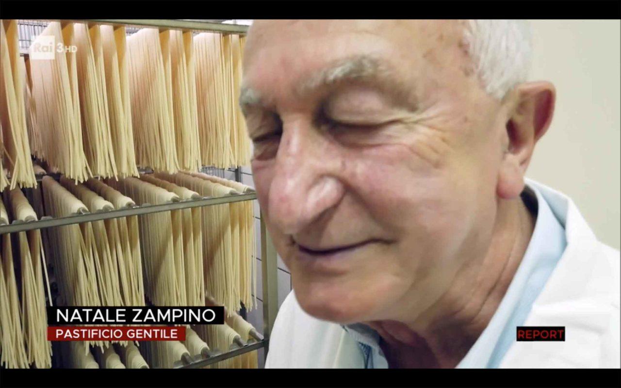 Zampino