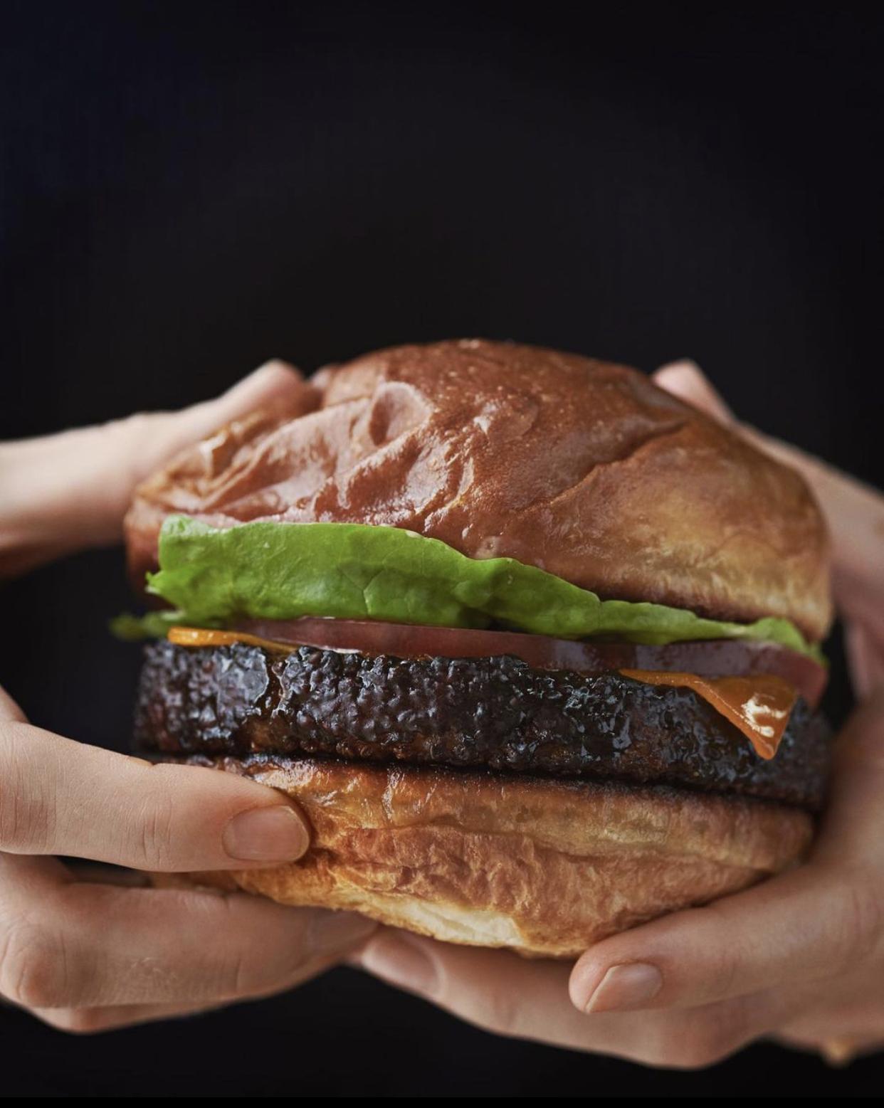 Rene Redzepi hamburger POPL
