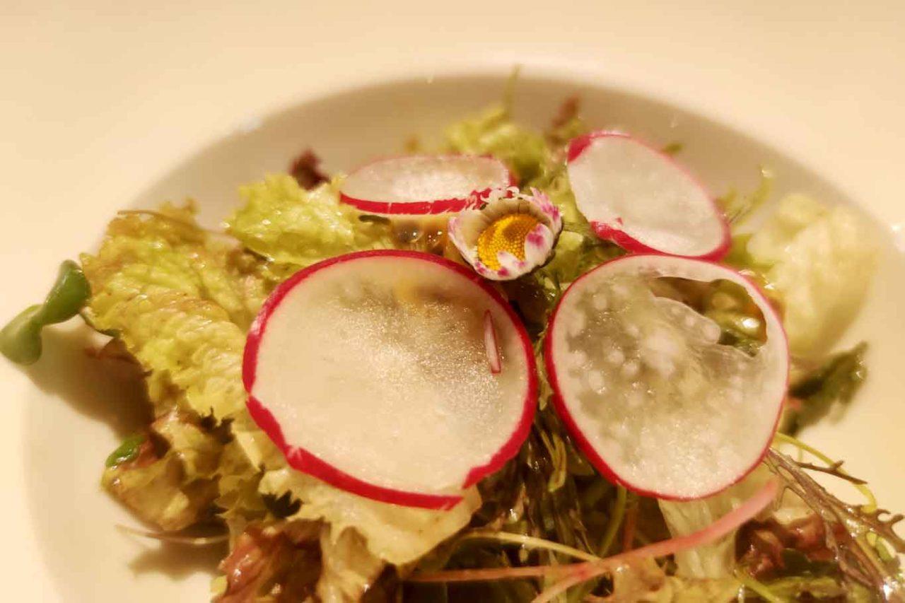 Insalata fiori e foglie al Caffè Doria