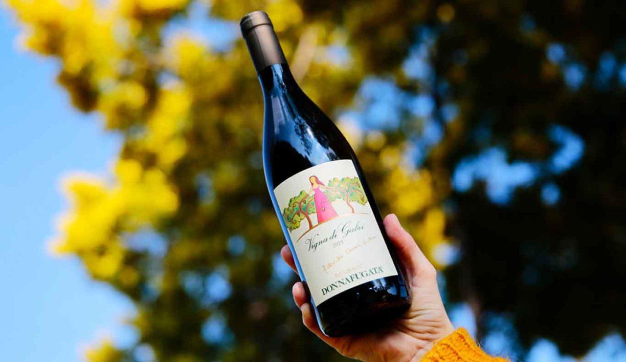 vigna gabri vino doffafugata