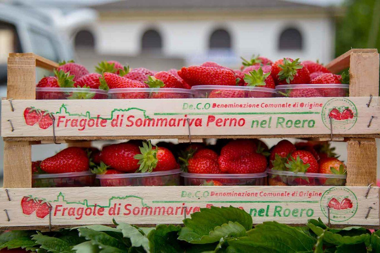 fragole di Sommariva Perno