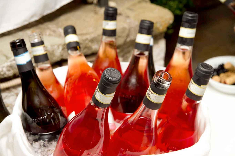 vino rosato rosé la rivolta