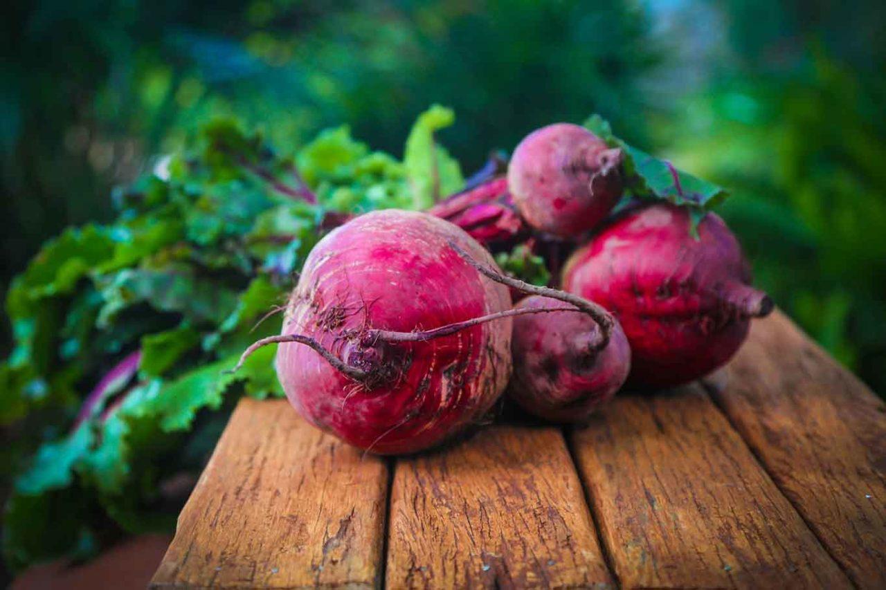 barbabietole rosse per la pasta dei ravioli