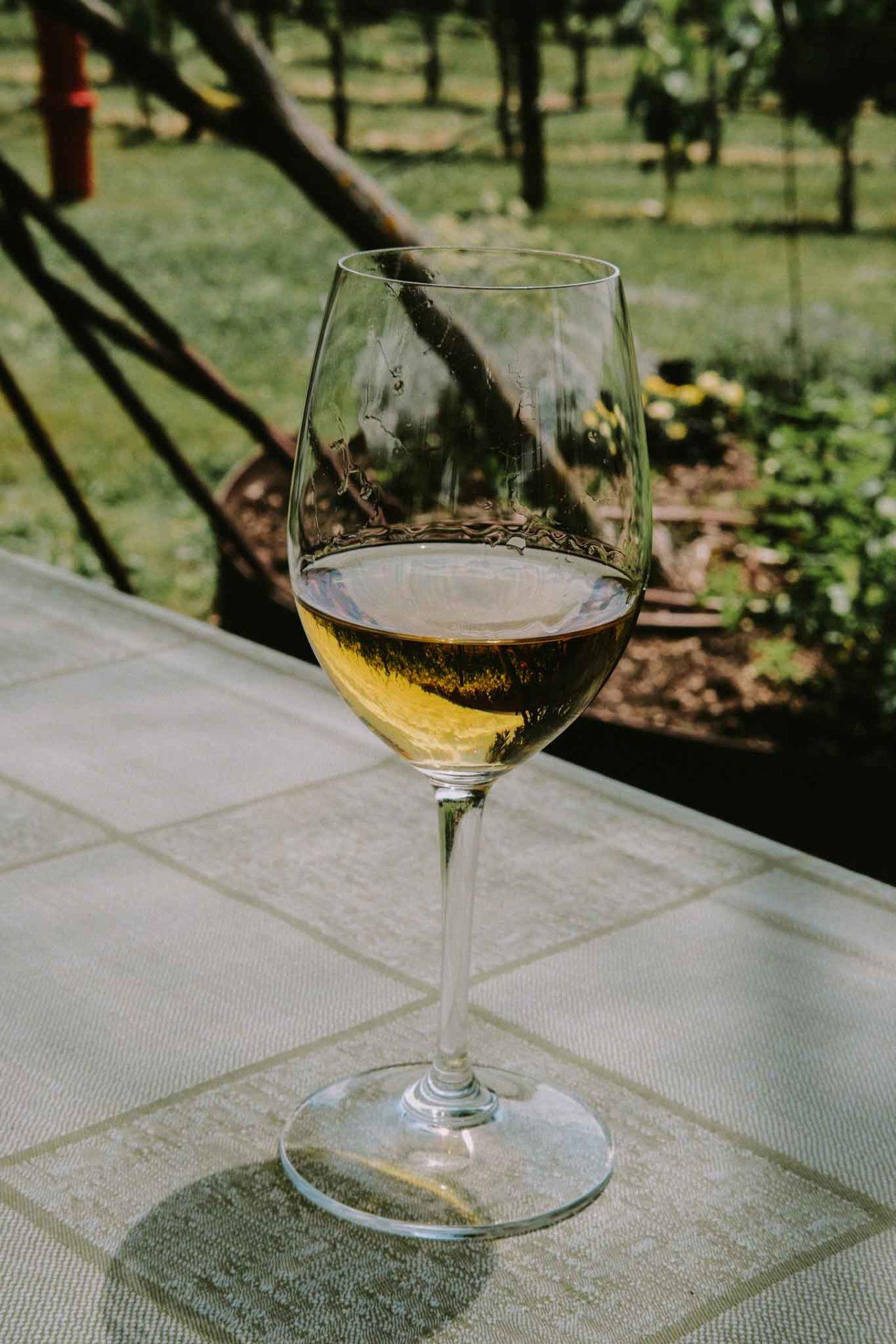 muffato della sala antinori vino dolce