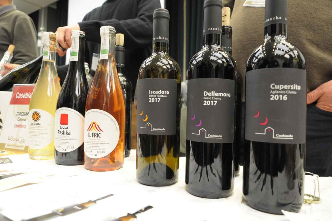 casebianche vini a natural born wines
