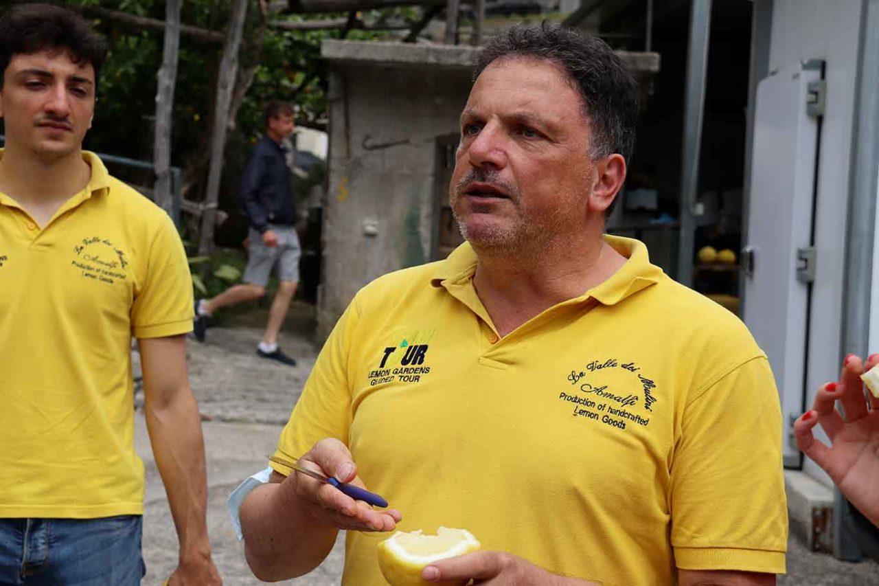 taglio dei limoni di Amalfi