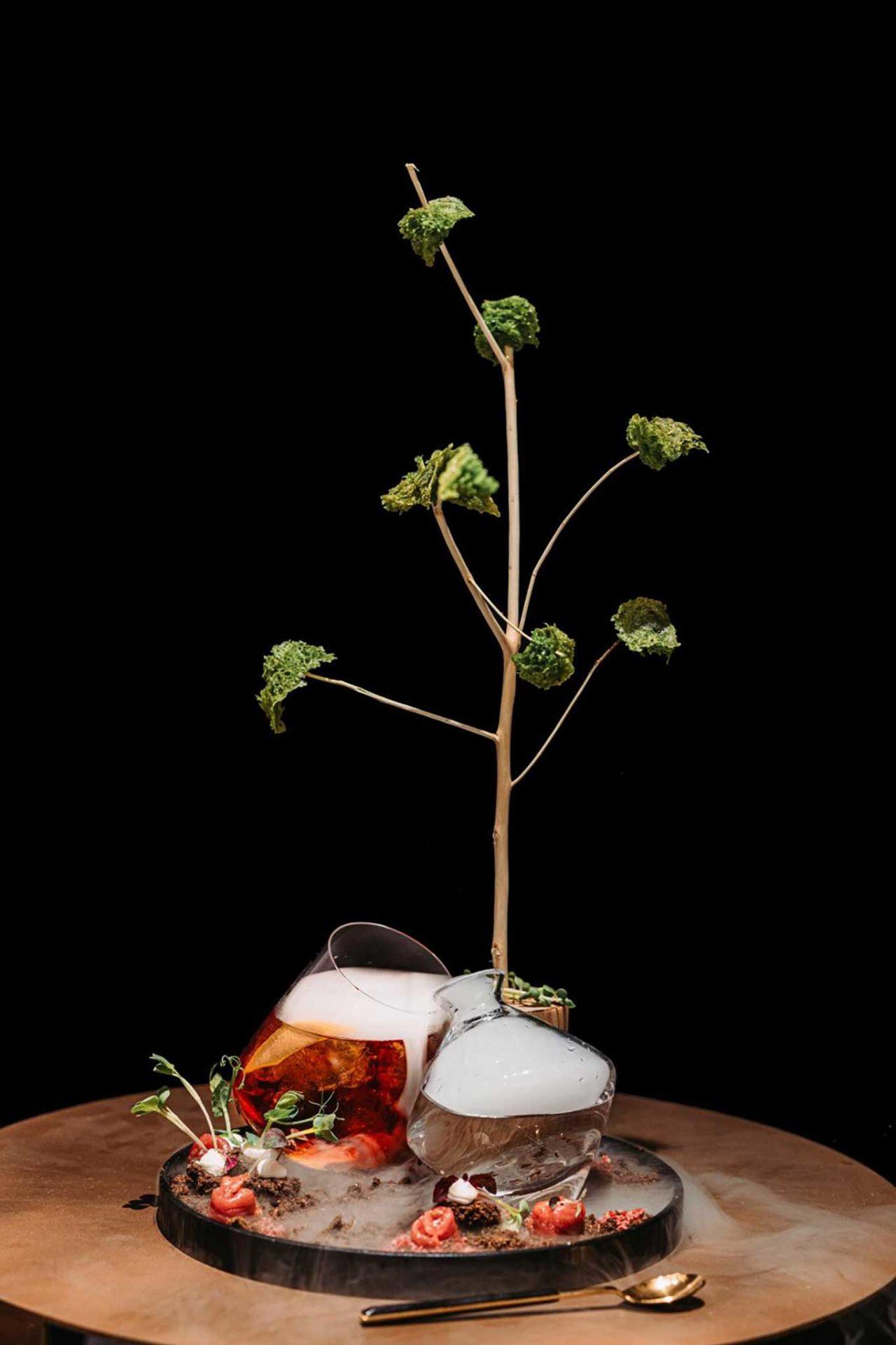 Cocktail Savana con carpaccio di zebra Koob