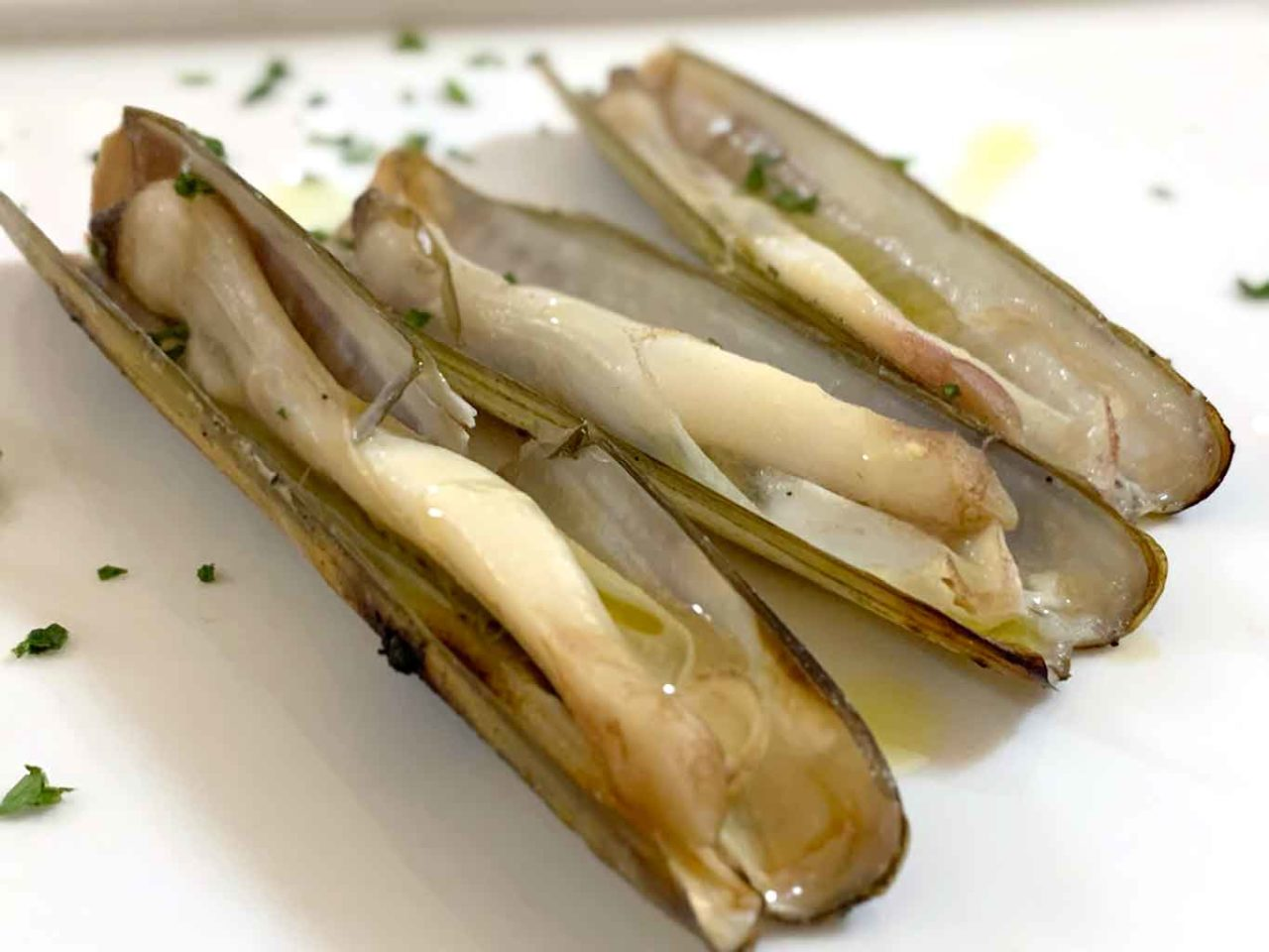 Taverna del Marinaio Lanciano Abruzzo cannolicchi al forno