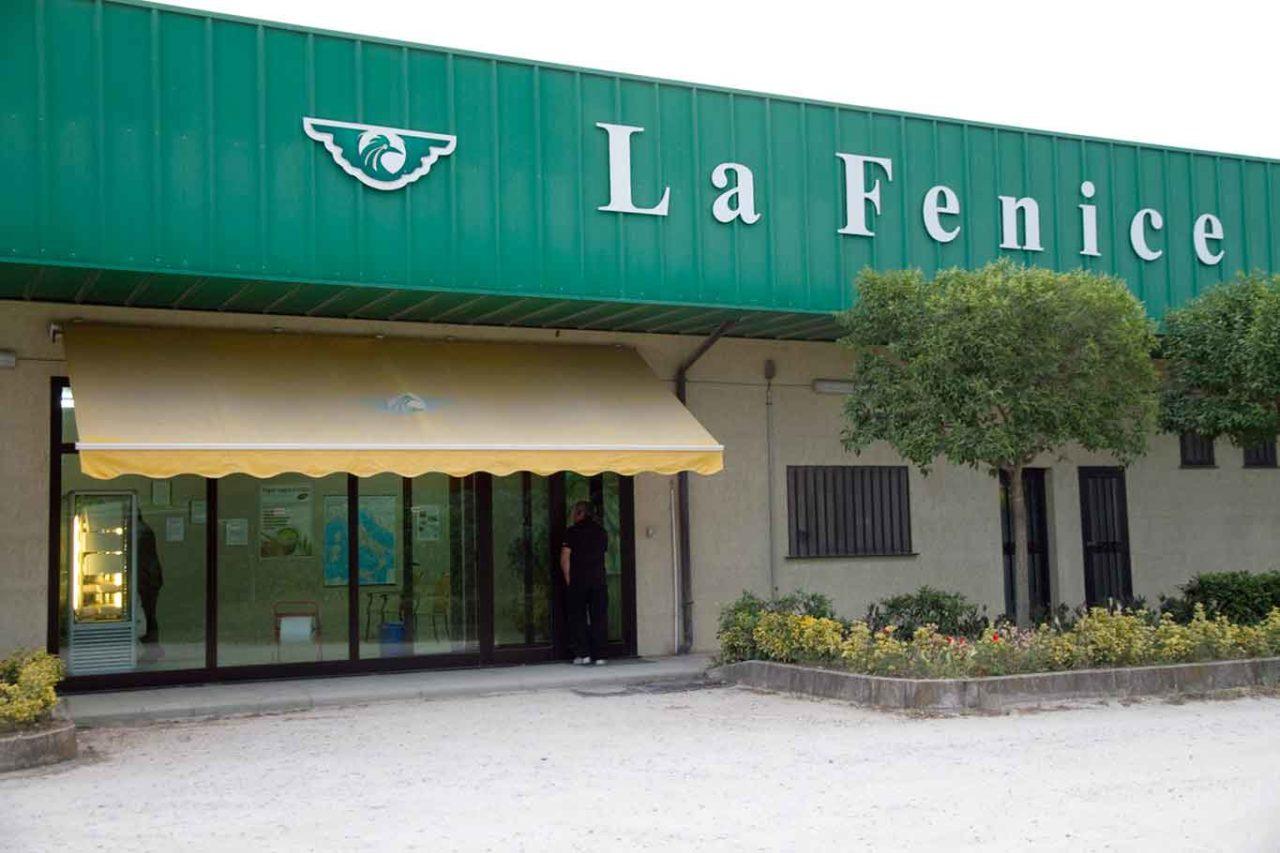 caseificio La Fenice