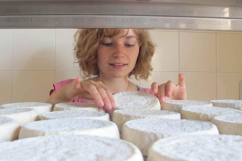 formaggio Murazzano Dop Langhe Piemonte