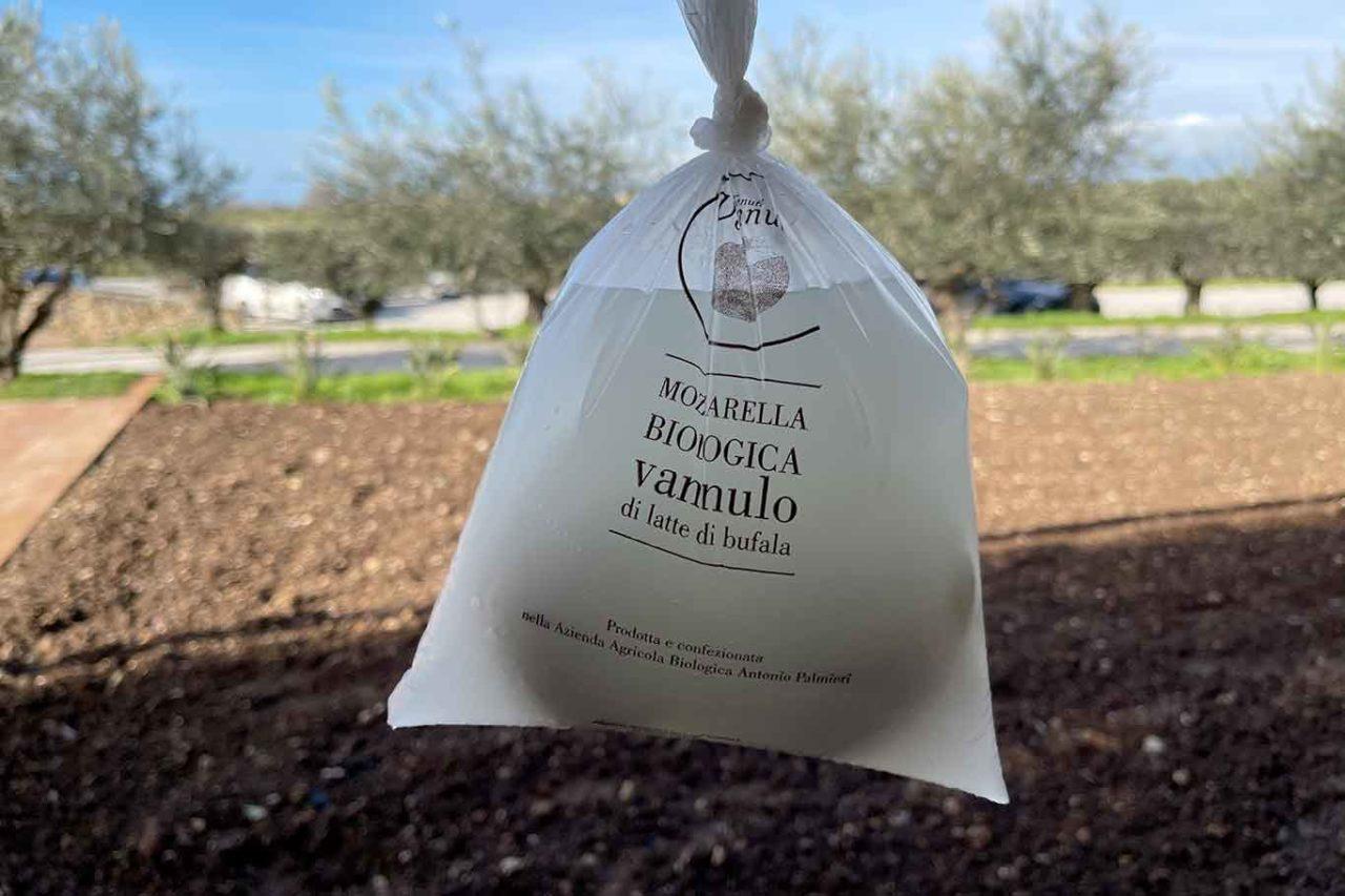 migliori mozzarelle di bufala a Caserta e a Salerno: Vannulo