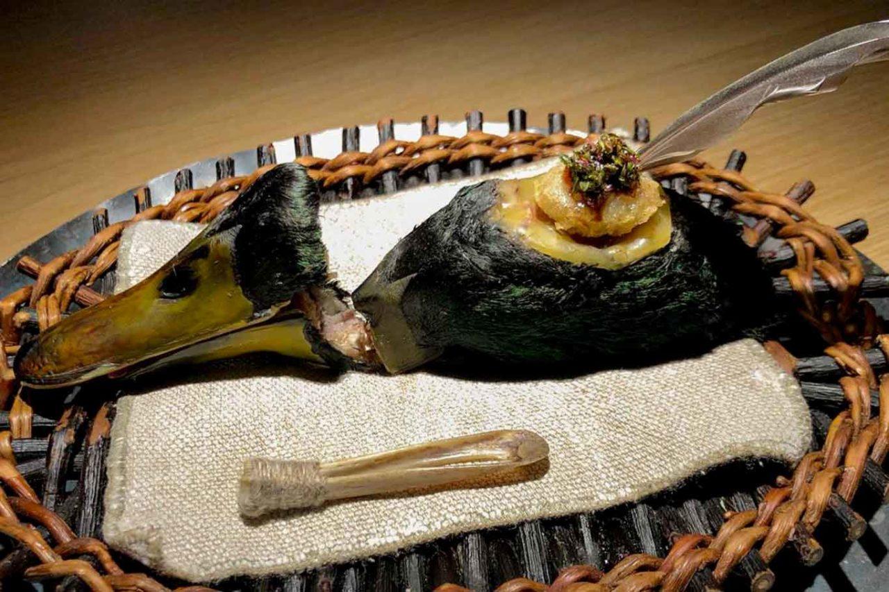 piatti del Noma: germano reale