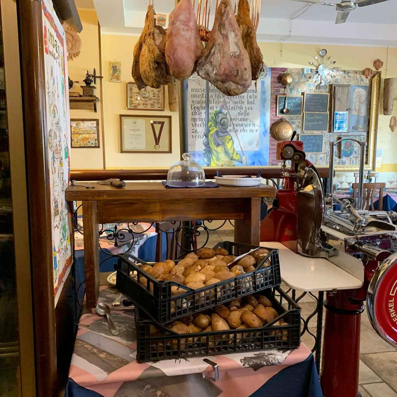 funghi in Umbria al sottobosco