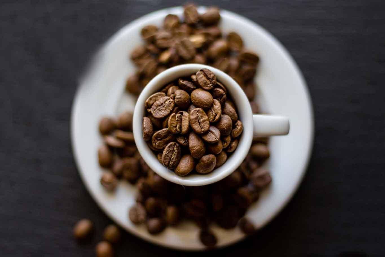 guida dei caffè e delle torrefazioni in Italia